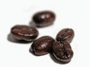 coffee-beans-on-white