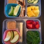 (Apple slices with Peanut Butter.  One kid has leftover grilled chicken, cucumbers and pineapple.  The other got Organic Sting Cheese, Strawberries and Spinach.)